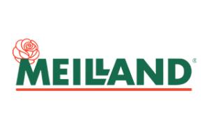 meiland-300x193